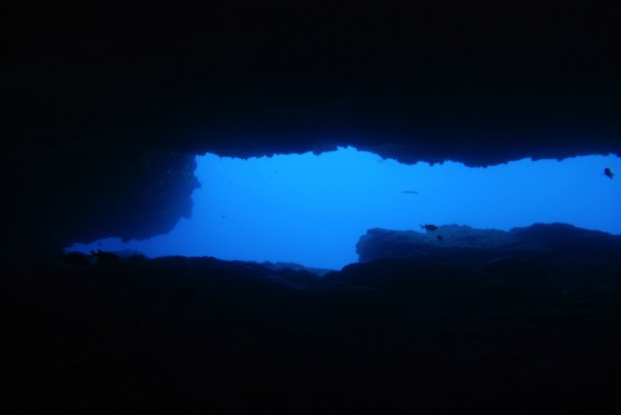 Dive sites Regona Cabo Verde5